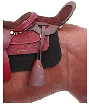 41Jbw7kFhoL. AC  - Royal King Leather Childs Tandem Saddle with Bars and Stirrups