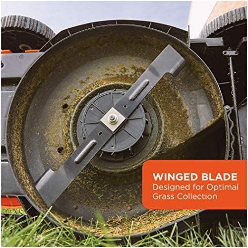51pBTCZHc9L. AC  - BLACK+DECKER Lawn Mower, Corded, 13 Amp, 20-Inch (BEMW213)