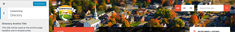 townpress admin 04 thumb - TownPress - Municipality WordPress Theme