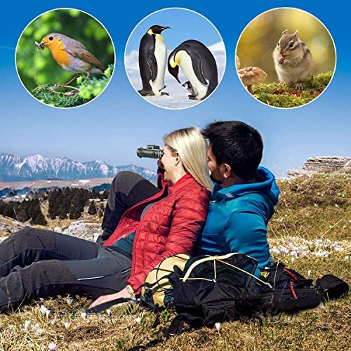 61FHY2DfvpL. AC  - Pankoo 40X60 Monocular High Power Monocular Scope for Bird Watching Traveling Concert Sports Game with Phone Adapter Tripod