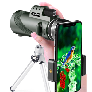 c6201f61 68bf 47ae 80a2 f32638f454f3.  CR0,0,300,300 PT0 SX300 V1    - Pankoo 40X60 Monocular High Power Monocular Scope for Bird Watching Traveling Concert Sports Game with Phone Adapter Tripod