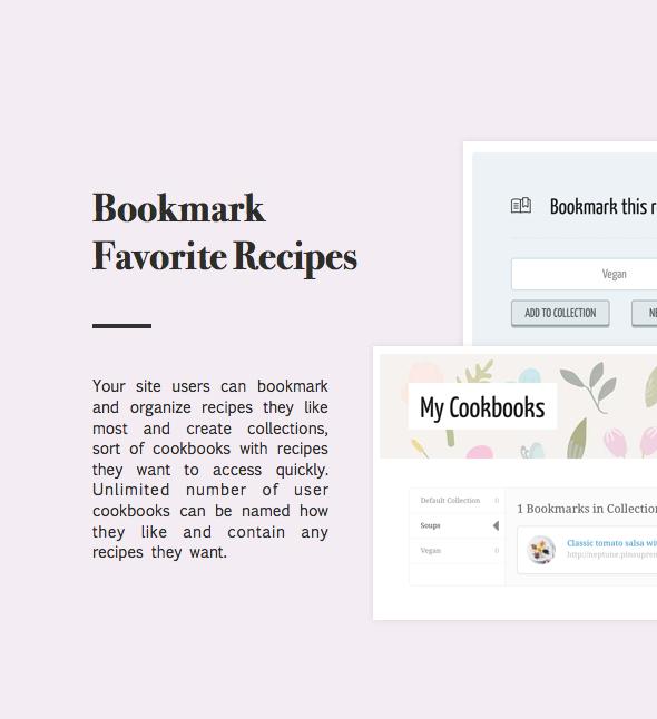 desc22 - Neptune - Theme for Food Recipe Bloggers & Chefs