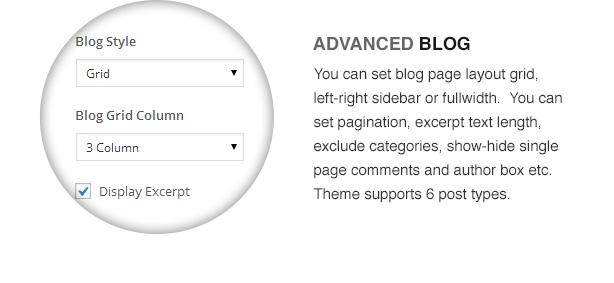 election theme features11 - Election - Political WordPress Theme