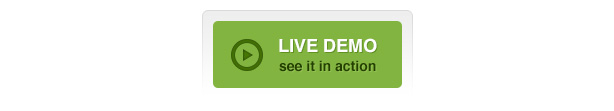 election theme live demo - Election - Political WordPress Theme