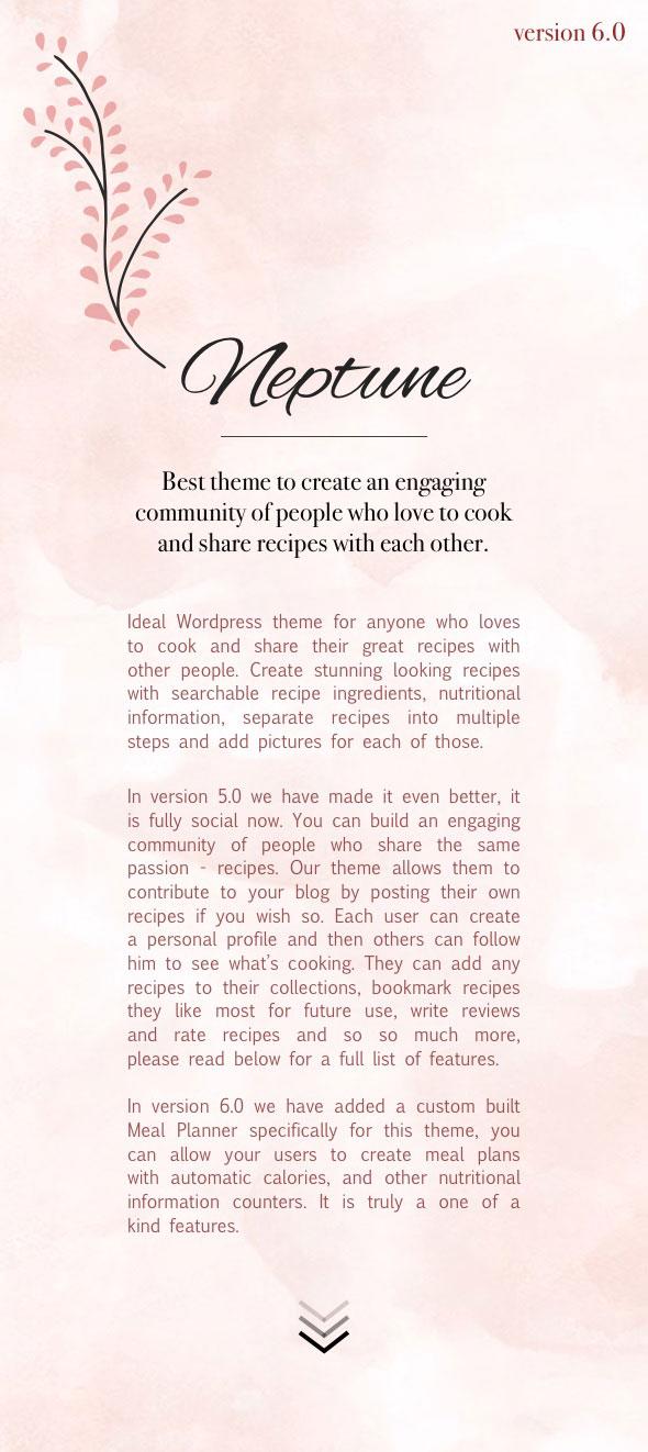 intro v6 info - Neptune - Theme for Food Recipe Bloggers & Chefs