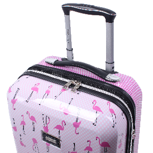 f496c2fc af9a 42d1 803e f4dfd57371ca.  CR0,0,300,300 PT0 SX300 V1    - Betsey Johnson Designer 20 Inch Carry On - Expandable (ABS + PC) Hardside Luggage - Lightweight Durable Suitcase With 8-Rolling Spinner Wheels for Women (Covered Roses)