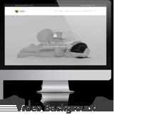 salbii home video - Salbii - Responsive Multi-Purpose WordPress Theme