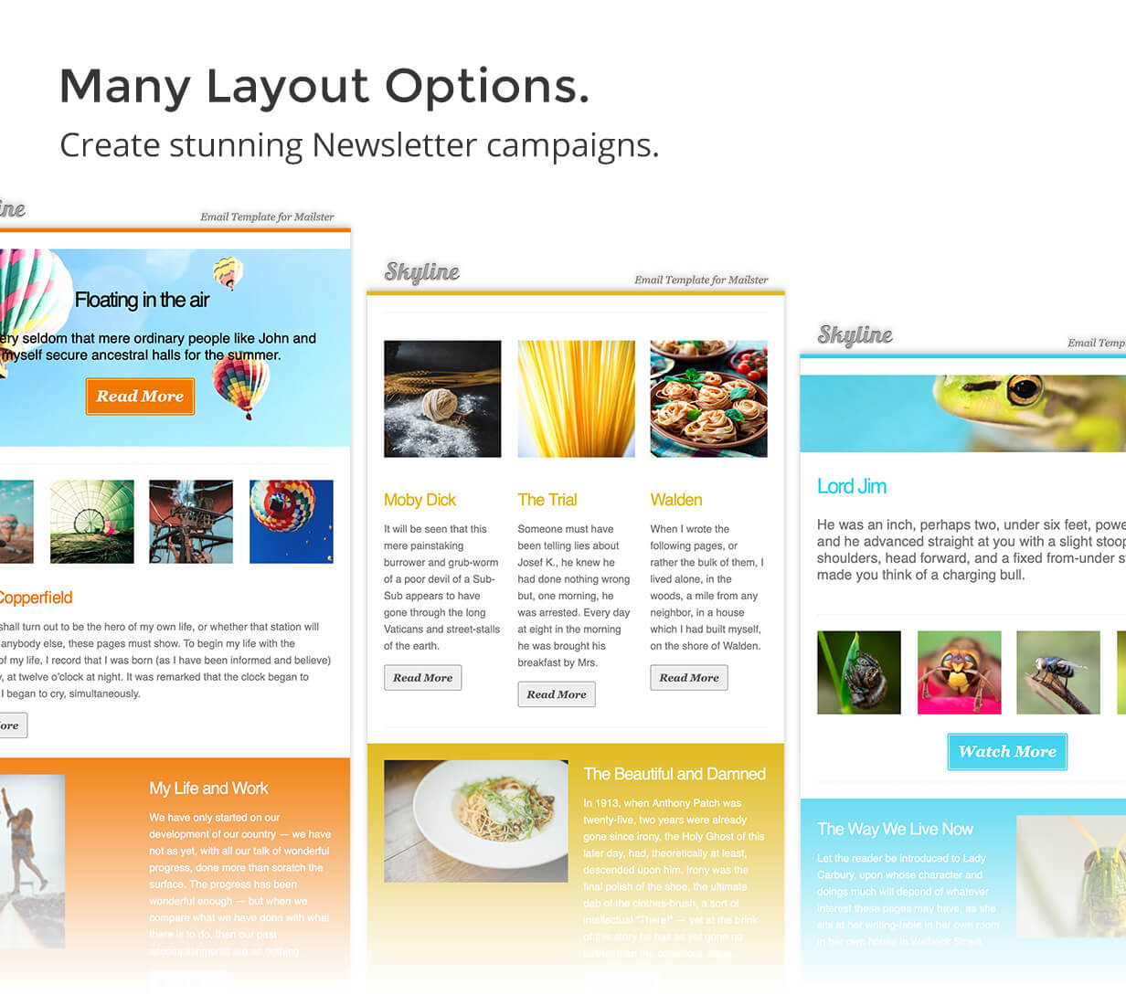 variations - Skyline - Email Template for Mailster