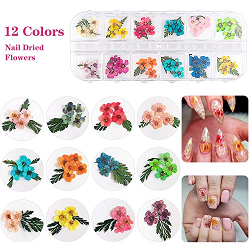 51zzJAYYuTL - 48 Colors Dried Flowers Nail Art Butterfly Glitter Flake 3D Holographic, Tufusiur Dry Flower Nails Sequins Acrylic Supplies Face Body Gifts for Decoration Accessories & DIY Crafting