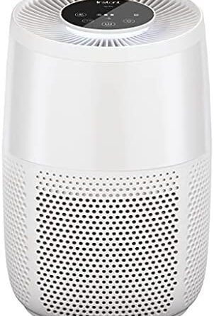 1633113346 414CKS6rIqS. AC  302x445 - Instant Air Purifier, Helps remove 99.9% of viruses (COVID-19), bacteria, allergens, smoke; advanced 3-in-1HEPA-13filtration with plasma ion technology, Small Room, Pearl