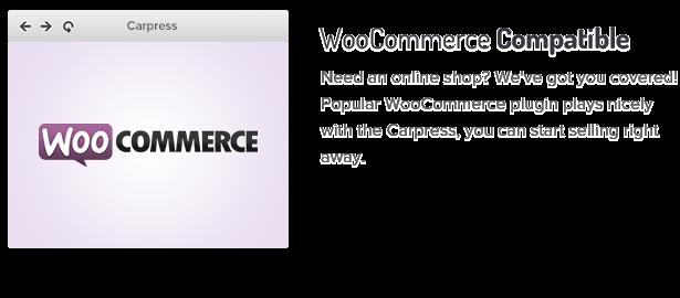 3 woocommerce compatible fs8 - CarPress - WordPress Theme For Mechanic Workshops