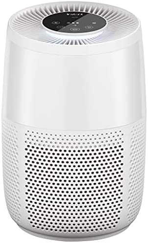 414CKS6rIqS. AC  - Instant Air Purifier, Helps remove 99.9% of viruses (COVID-19), bacteria, allergens, smoke; advanced 3-in-1HEPA-13filtration with plasma ion technology, Small Room, Pearl