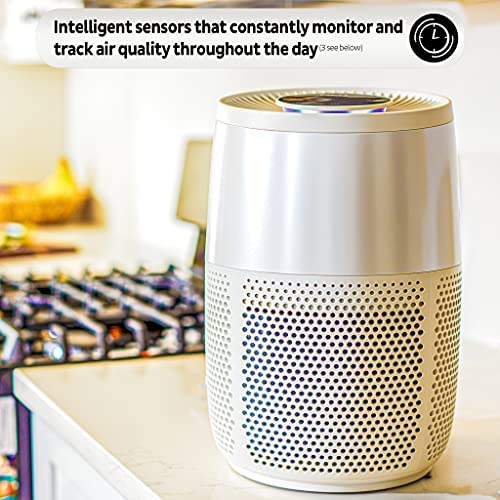 514g6e66FZS. AC  - Instant Air Purifier, Helps remove 99.9% of viruses (COVID-19), bacteria, allergens, smoke; advanced 3-in-1HEPA-13filtration with plasma ion technology, Small Room, Pearl
