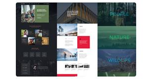 brando features img awesome readymade layouts - Brando Responsive and Multipurpose OnePage WordPress Theme