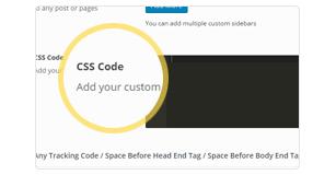 custom css and js - Brando Responsive and Multipurpose OnePage WordPress Theme