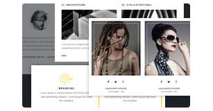 features box styles - Brando Responsive and Multipurpose OnePage WordPress Theme
