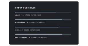 progress bars - Brando Responsive and Multipurpose OnePage WordPress Theme